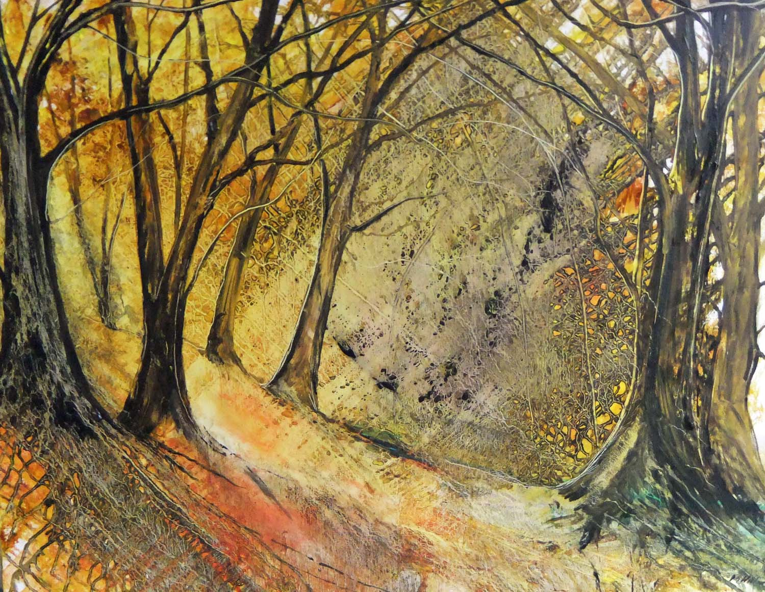 Sunburst Woodland by Peter Hill
