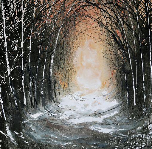 Colour in Winter - Tree Tunnel