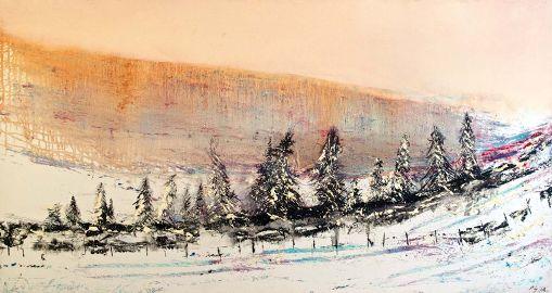 Winter Snow - Fir Trees