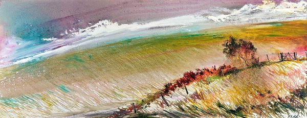 Windswept Grasses