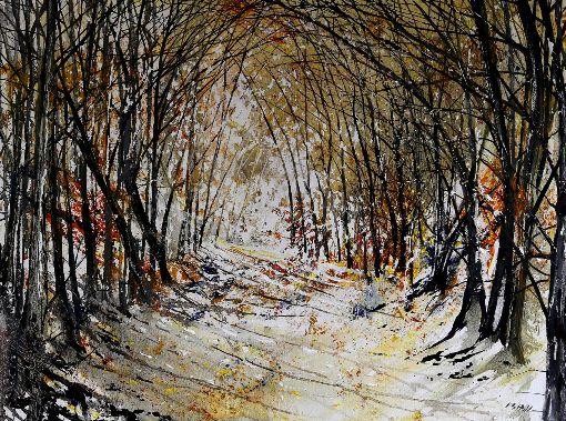Woodland Walk - Autumn
